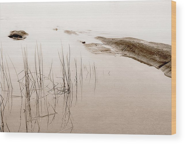 Water Wood Print featuring the photograph Peaceful Moment by Linda McRae