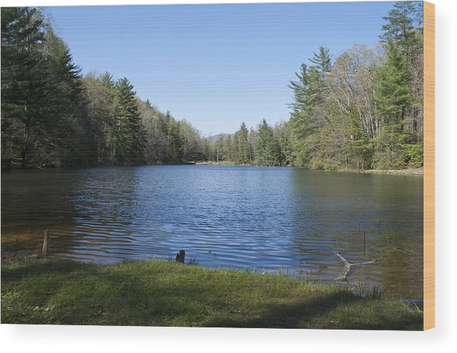 Wood Print featuring the photograph Peaceful Thought by Greg Burnside