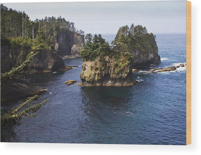 Chad Davis Wood Print featuring the photograph Peninsula Point by Chad Davis