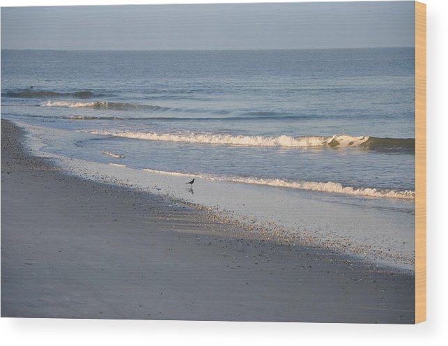 Beach Wood Print featuring the photograph Perfect by Bill Cannon