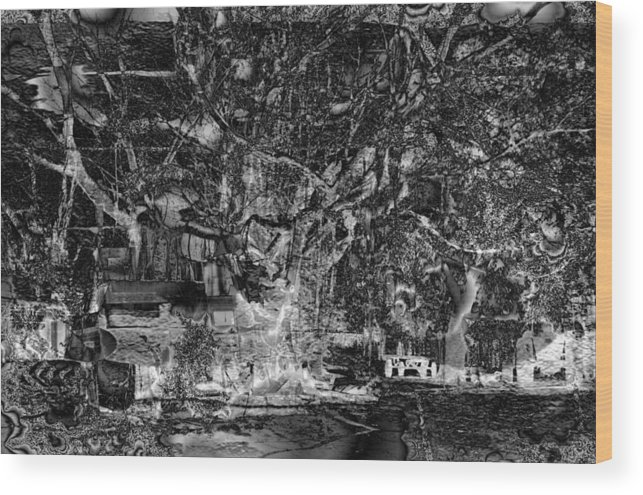 Tree Wood Print featuring the photograph Perturbations Backyard by Johnny Aguirre