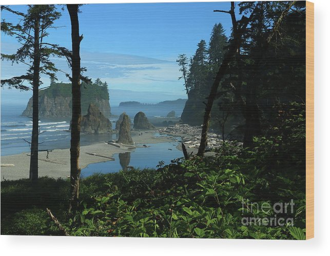Beach Wood Print featuring the photograph Picturesque Ruby Beach View by Christiane Schulze Art And Photography
