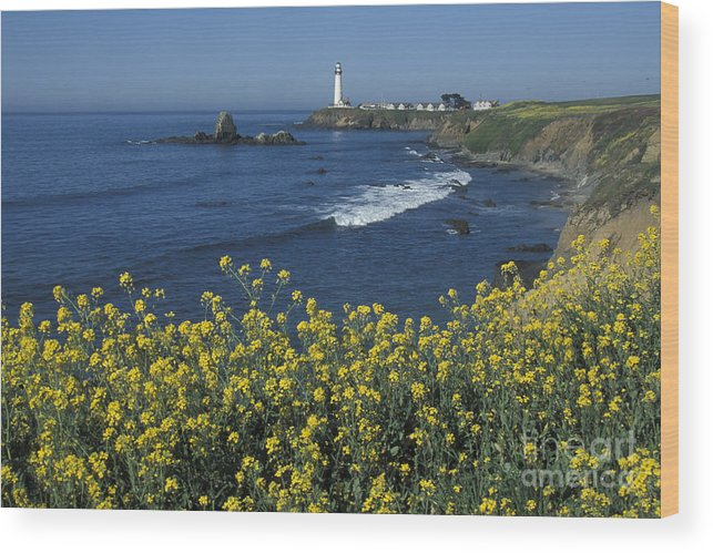 California Wood Print featuring the photograph Pigeon Point Panorama by Stan and Anne Foster