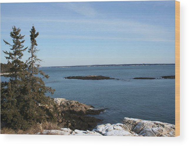 Landscape Wood Print featuring the photograph Pine Coast by Doug Mills