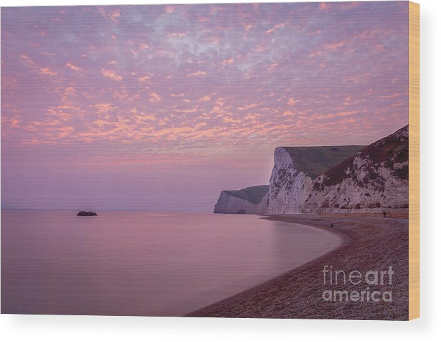 Cliffs Wood Print featuring the photograph Pink Jurassic Coast by Philip Pound