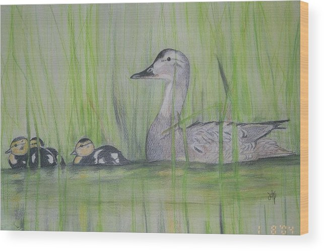 Pintail Ducks Wood Print featuring the painting Pintails In The Reeds by Debra Sandstrom