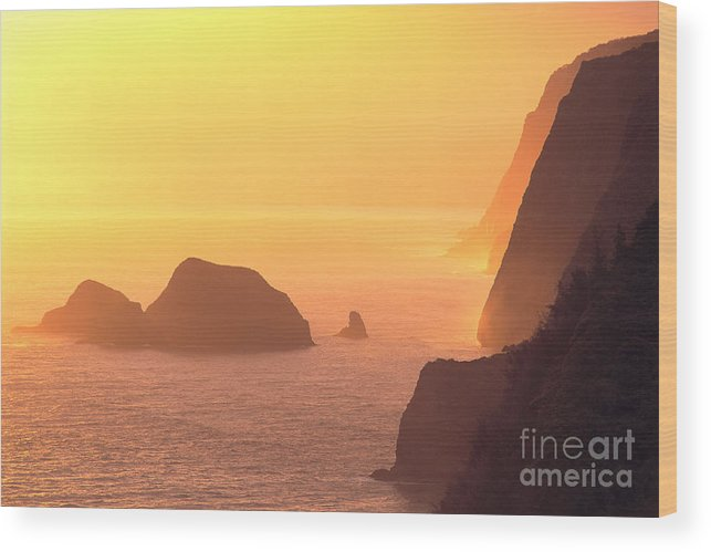 Big Wood Print featuring the photograph Pololu Valley Lookout by Greg Vaughn - Printscapes