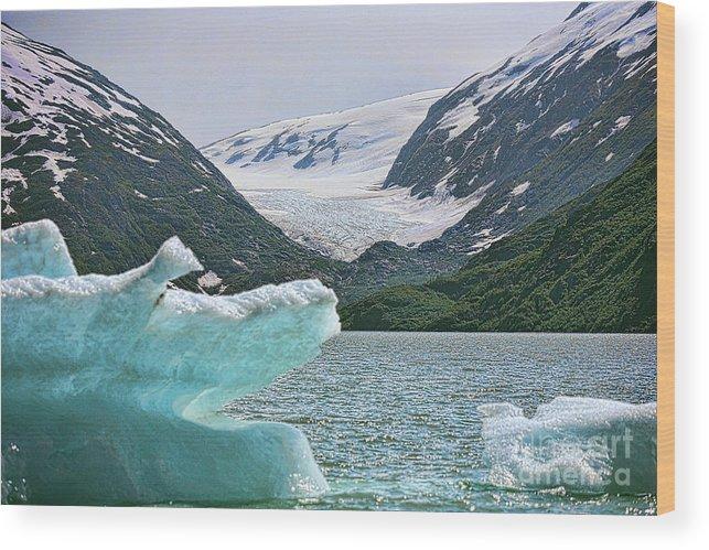 Alaska Wood Print featuring the photograph Porter Glacier Alaska by Chuck Kuhn