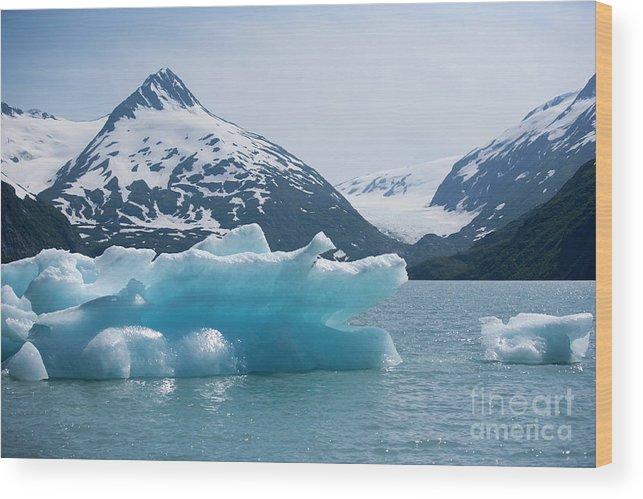 Alaska Wood Print featuring the photograph Porter Glacier Alaska II by Chuck Kuhn