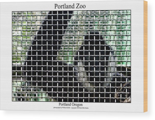 Portland Photographs Wood Print featuring the photograph Portland Zoo by William Jones