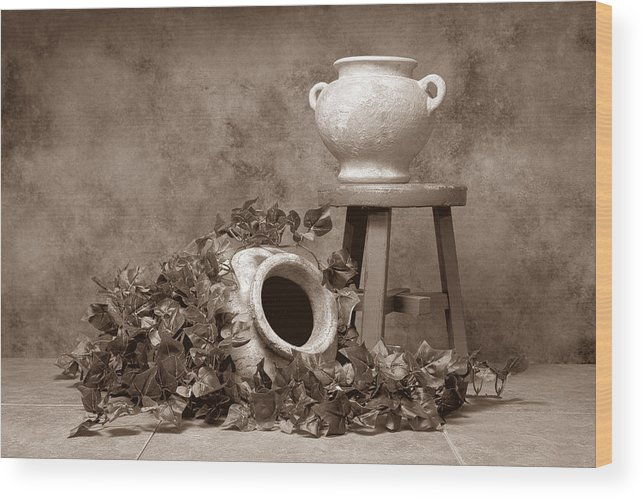 Ivy Wood Print featuring the photograph Pottery With Ivy I by Tom Mc Nemar