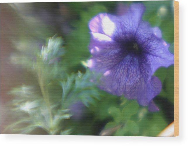 Purple Flower Wood Print featuring the photograph Purple In Monets Garden by Jennifer McDuffie
