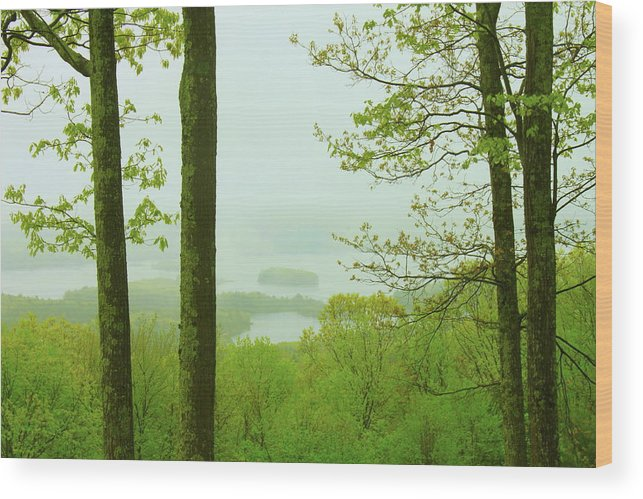 Quabbin Reservoir Wood Print featuring the photograph Quabbin Reservoir Spring Rain by John Burk