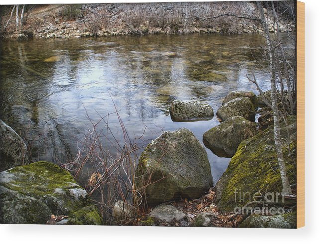 Lake Wood Print featuring the photograph Quiet Reverie by Catherine Melvin