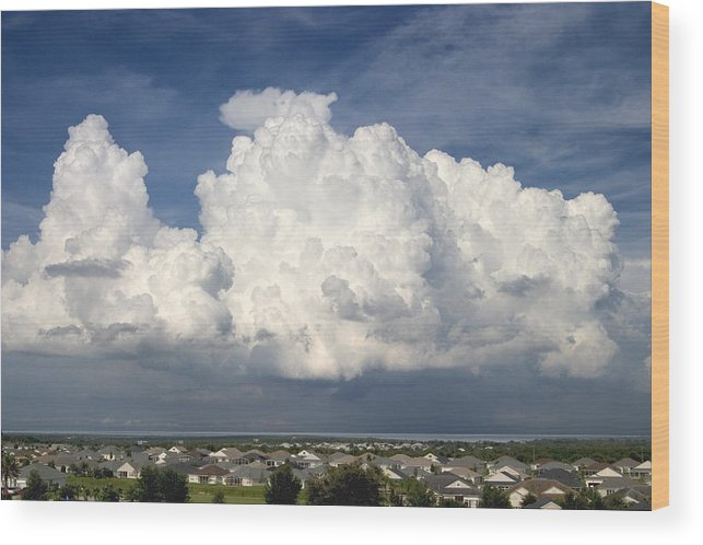 Clouds Wood Print featuring the photograph Rain Clouds Over Lake Apopka by Carl Purcell