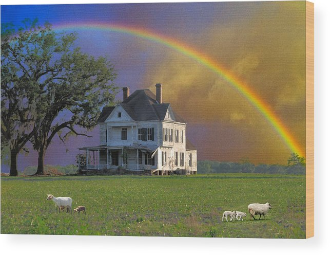Landscapes Wood Print featuring the photograph Rainbow Meadow by Jan Amiss Photography