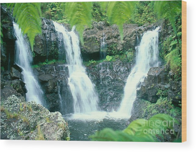 Big Wood Print featuring the photograph Rainforest Waterfalls by Peter French - Printscapes