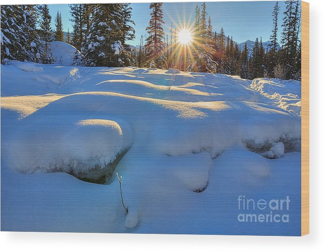 Bow River Wood Print featuring the photograph Reaching For Heat by James Anderson