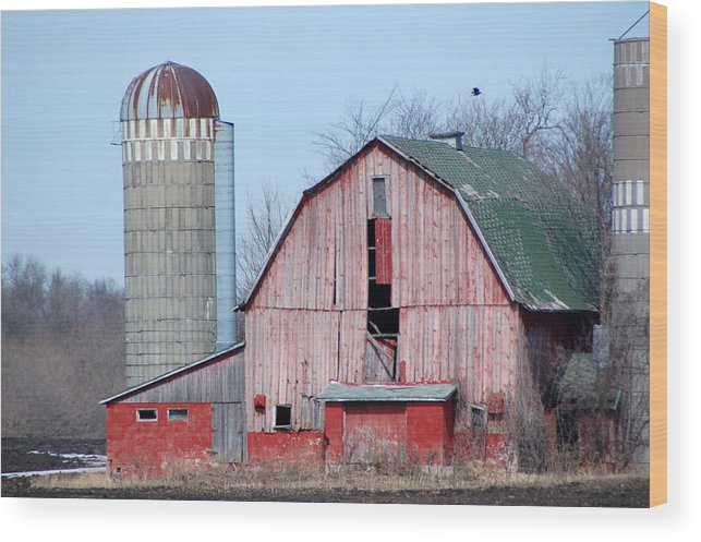 Old Barn Wood Print featuring the photograph Red Barn On Texas Avenue by Mary Pearson