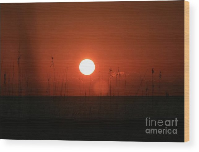 Sunset Wood Print featuring the photograph Red Sunset And Grasses by Nadine Rippelmeyer