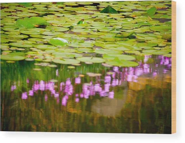 Floral Wood Print featuring the photograph Reflected Flowers And Lilies by Paul Kloschinsky