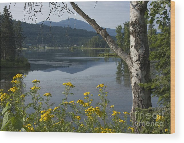 Landscape Wood Print featuring the photograph Reflections Of Summer by Idaho Scenic Images Linda Lantzy