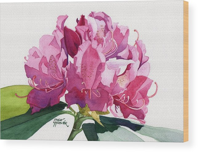 Rhododendron Wood Print featuring the painting Rhododendron by Linda Hoover