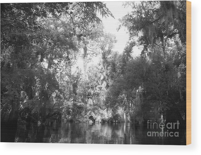 Black Wood Print featuring the photograph River Wooded by Jack Norton