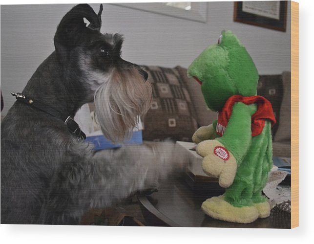 Dog Wood Print featuring the photograph Rocky And The Frog by Carol Bradley