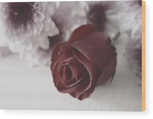 Rose Wood Print featuring the photograph Rose #006 by Ninie AG