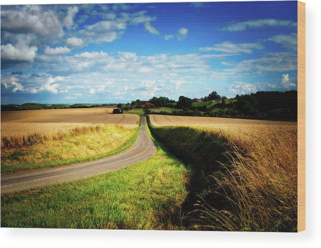 France Wood Print featuring the photograph Rural Road In France by Skitterphoto