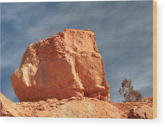 Zion National Park Wood Print featuring the photograph Sandy Rock In Morning Light by Paul Cannon