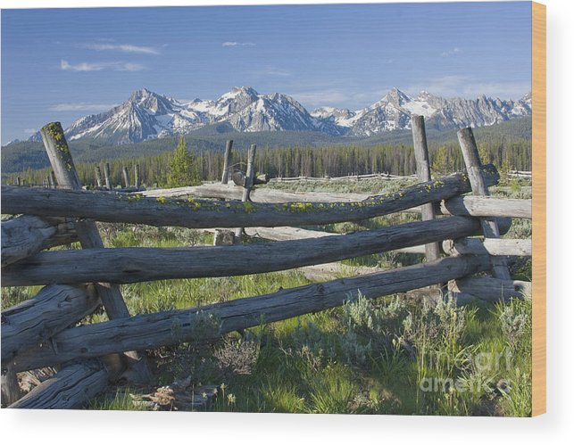 Sawtooth Wood Print featuring the photograph Sawtooth Range by Idaho Scenic Images Linda Lantzy