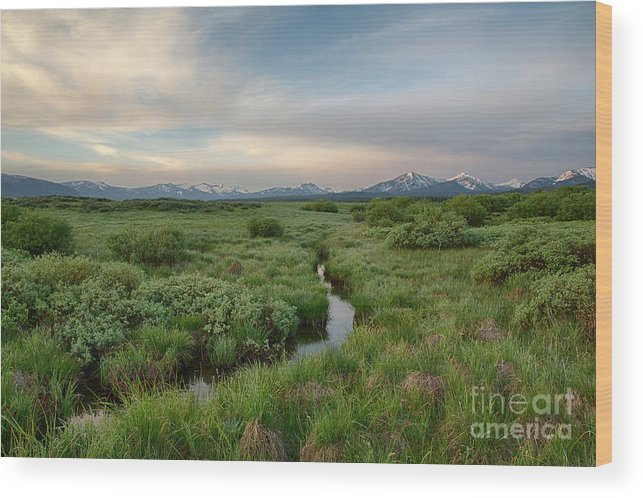 Boulder Mountains Wood Print featuring the photograph Sawtooth Valley II by Idaho Scenic Images Linda Lantzy