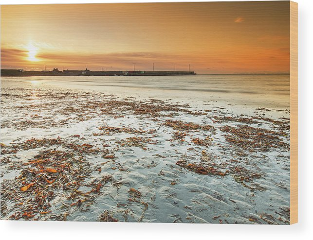 Sunset Wood Print featuring the photograph Seafield Pier by Ann O Connell