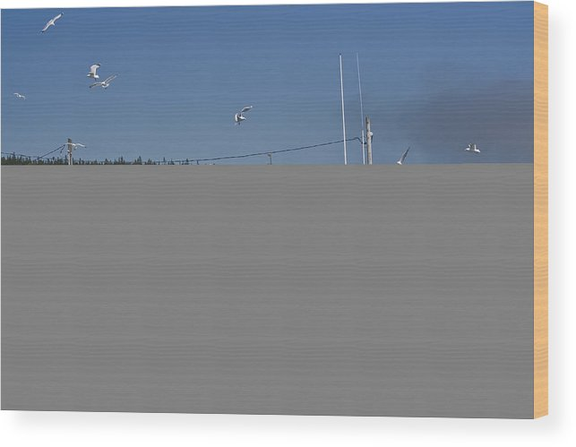 Fishing Boat Wood Print featuring the photograph Seagulls Flying By Fishing Boat by Sven Brogren