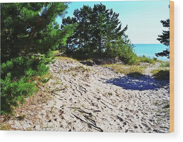 Seaside Wood Print featuring the photograph Seaside Path by Tinto Designs