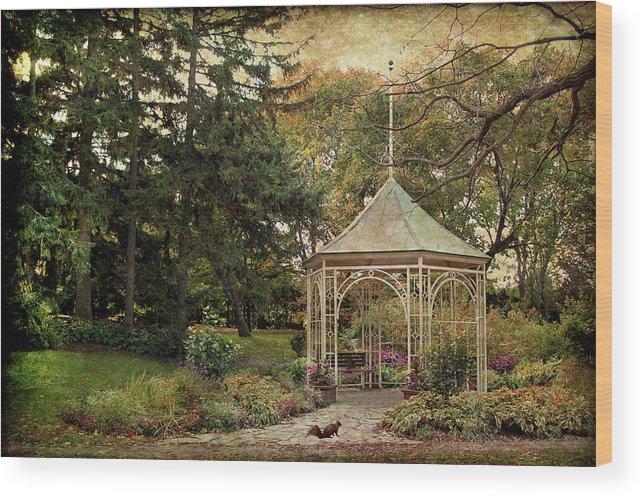 Stratford Wood Print featuring the digital art Shakespeare's Squirrel by Margaret Hormann Bfa