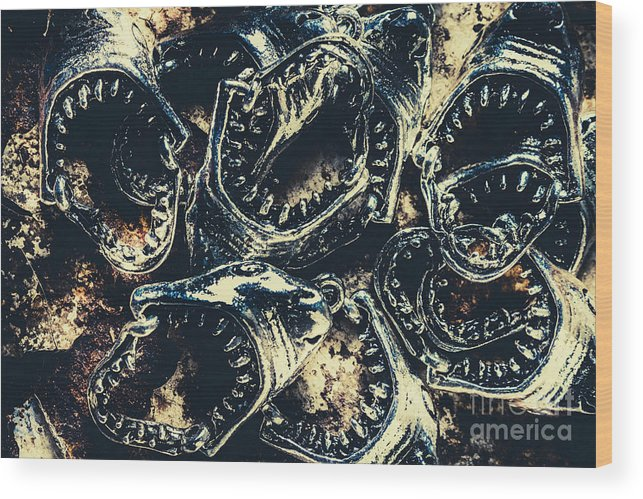 Fish Wood Print featuring the photograph Shark Jaws by Jorgo Photography - Wall Art Gallery