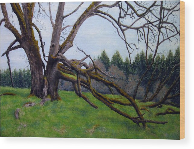 Landscape Wood Print featuring the painting Signature Oak by Carl Capps