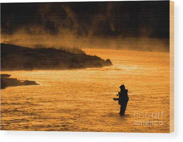 Bait Wood Print featuring the photograph Silhouette Of Man Flyfishing Fishing In River Golden Sunlight by Lane Erickson