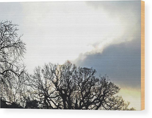 Sky Wood Print featuring the photograph Sky Lights by Tinto Designs