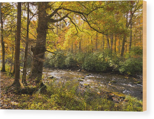 Appalachia Wood Print featuring the photograph Smoky Autumn by Debra and Dave Vanderlaan
