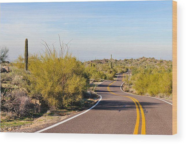 Arizona Wood Print featuring the photograph Snake Road by Tom Dowd