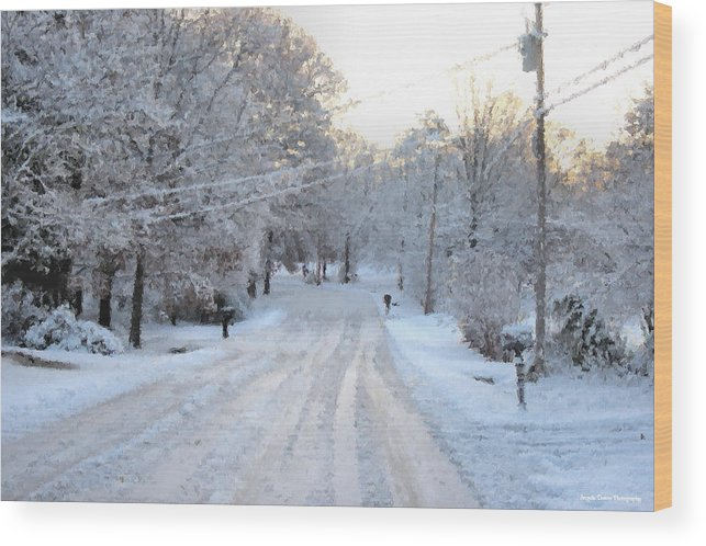 Snow Wood Print featuring the photograph Snow Covered Lane In Paint by Johann Todesengel