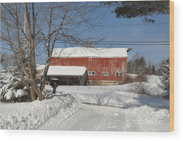 Barn Wood Print featuring the photograph Snow Covered Masachussetts Barn by John Black