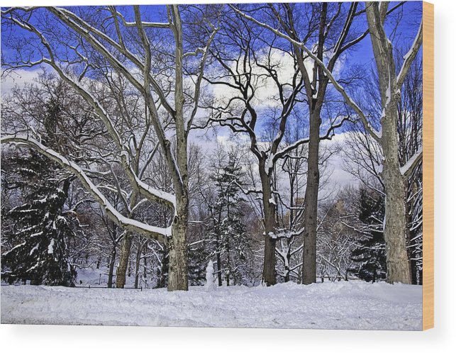 Snowman Wood Print featuring the photograph Snowman In Central Park Nyc by Madeline Ellis