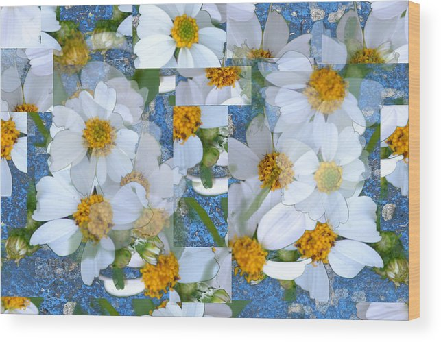 Rd Erickson Wood Print featuring the photograph Spanish Nettles Collage Abstract by rd Erickson