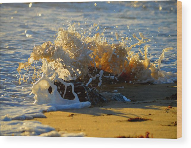 Ocean Wood Print featuring the photograph Splash Of Summer - Cape Cod National Seashore by Dianne Cowen