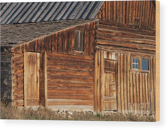 Jackson Hole Wood Print featuring the photograph Splinters by Bob Phillips